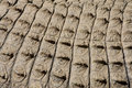 Free Croc Skin 1 Royalty Free Stock Photos - 5212848