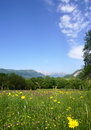 Free Tranquil Rural Scene With A Meadow And Mountains Royalty Free Stock Image - 5374676