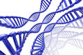 Free Render Of DNA Stock Image - 5708981