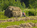 Free Haymaking In Siberia 1 Royalty Free Stock Photos - 5965138