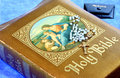 Free Vintage Holy Bible Stock Photo - 6004560