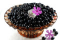 Free Blueberry With Flowers Royalty Free Stock Images - 6096709
