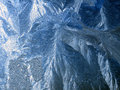 Free Icy Pattern Stock Photo - 6123120
