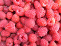 Free Juicy Raspberry Royalty Free Stock Photos - 6138098