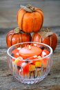 Free Autumn Still Life Stock Image - 6536751