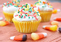 Free Fall Cupcakes Royalty Free Stock Image - 6582776