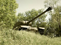 Free Old Tank In The Bushes Royalty Free Stock Photography - 6875527