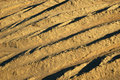 Free Dry Soil Pattern Stock Images - 701104
