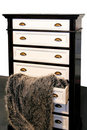 Free Drawers And Fur Stock Photo - 8140990