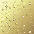 Free Water Drops On Gold Royalty Free Stock Photo - 8175145