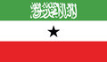 Free Flag Of Somaliland Vector Icon Illustration Royalty Free Stock Photography - 82382937