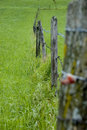 Free Fence On Grassland Stock Photos - 857043