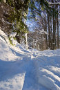 Free Winter Pass Stock Photography - 8560562