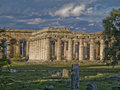 Free Ruins, Paestum, Italy Royalty Free Stock Image - 8621046