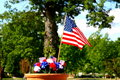 Free American Patriotism - Flag And Tree Stock Photography - 874862
