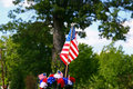 Free American Patriotism - Flag And Tree 2 Royalty Free Stock Photography - 894187