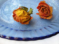 Free Dry Roses 87 On Blue Plate Stock Photo - 8908590