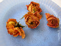 Free Dry Roses 91 On Blue Plate Stock Photo - 8908780