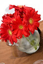 Free Flower Arrangement Royalty Free Stock Image - 8984346