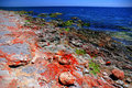 Free Black Sea Shore In Colors 1 Royalty Free Stock Photos - 915928