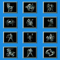 Free Zodiac S Sign Royalty Free Stock Images - 9294499
