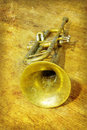 Free Trumpet Royalty Free Stock Photography - 9413847