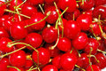 Free Red Cherries Stock Photography - 9780892