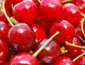 Free Red Cherries Macro Royalty Free Stock Photos - 9780918