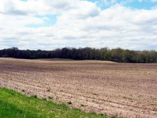 Free Field In Western Michigan Royalty Free Stock Images - 8499