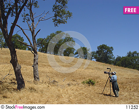 Free Birdwatcher Taking Pictures Stock Photography - 11252