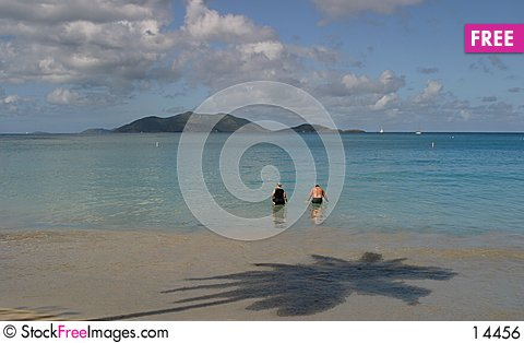 Free Caribbean Beach Royalty Free Stock Image - 14456
