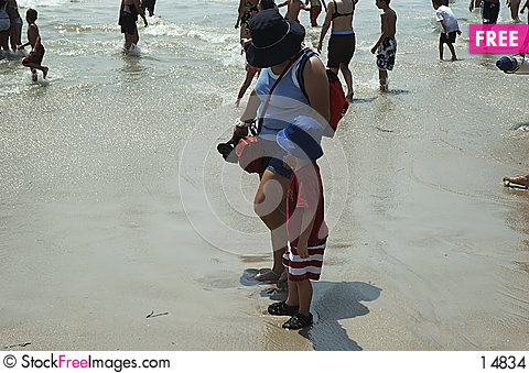 Free At The Beach Stock Images - 14834