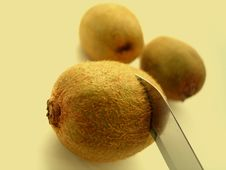 Free Three Kiwi Stock Photography - 12042