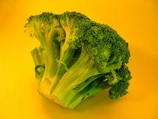 Free Colorful Brocolli I Stock Image - 12471