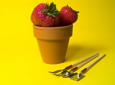 Free Potted Strawberries Royalty Free Stock Images - 13139
