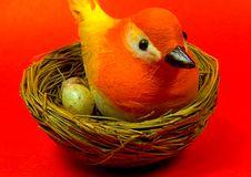 Free Bird Nest Royalty Free Stock Photo - 13365