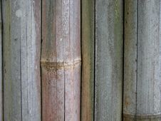 Free Bamboo Fence Stock Images - 13784