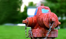 Free Fire Hydrant Royalty Free Stock Images - 15069