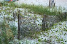 Free Fence In The Dunes Stock Images - 15294