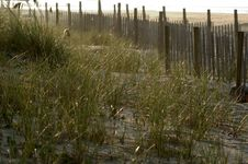 Free Fence In The Dunes Stock Photo - 15600