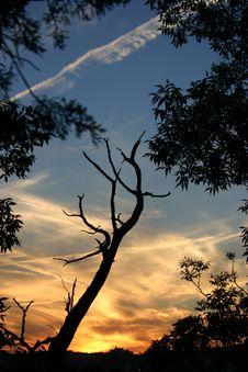 Free Sunset 4 Stock Photos - 15663