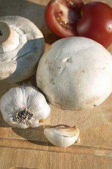 Free Mushrooms Stock Image - 104421