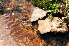 Free Close Up Of Stream Stock Images - 106074
