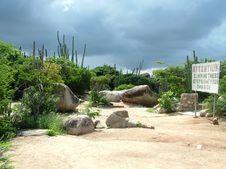 Free Aruba Stock Image - 107851