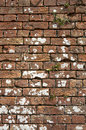 Free Old Weathered Red Brick Wall Royalty Free Stock Photos - 1002998