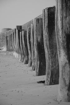 Free Row Of Wooden Beach Posts Stock Photos - 1000283