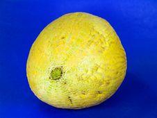 Free Cantaloupe Melon 3 Royalty Free Stock Photos - 1003688