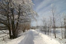 Free Winter Scenery Royalty Free Stock Image - 1004136