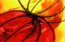 Free Abstract On Glass Royalty Free Stock Image - 1005096