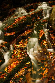 Free Autumn Stream In Giant Mountains Royalty Free Stock Images - 1006059